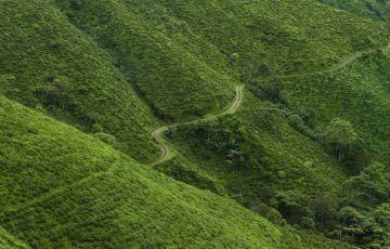 Paradise Darjeeling Tour