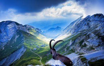 Rail Adventure in Switzerland Tour