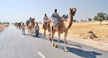 Rustic Rural Rajasthan Tour