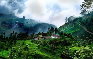 South India Hill Station Tour  7 Night 8 Days