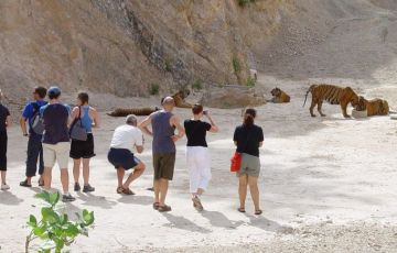 Temple Tiger Of North India And Nepal Tour