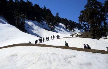 The Chandrashila Trek Tour