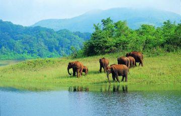 Wildlife in Rajasthan Tour