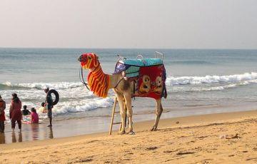 Beaches of Puri