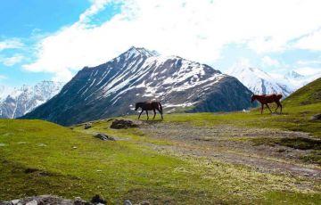 Beauty Srinagar Tour