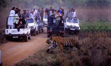 Bharatpur Trip