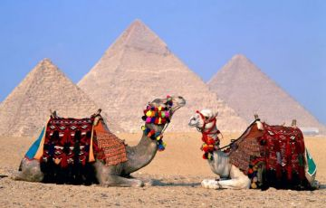 Cairo Tour with Nile Cruise