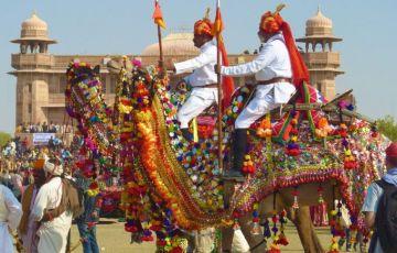 Camel Festival Bikaner Tour