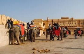 Colourful Rajasthan Tour 14 Nights