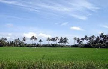 God's Own Country (Kerala)