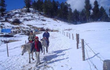 Himachal Highlights Tour