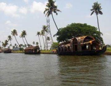 Honeymoon Backwater