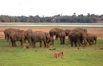 Karnataka Spiritual, Wildlife and Nature Tour