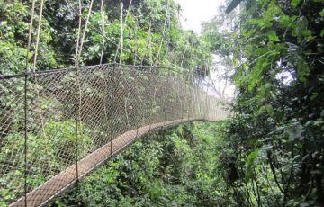 Keoladeo Ghana National Park (Bharatpur) Weekend Getaway Tou