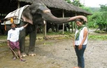 Kerala Ayurveda And Wildlife