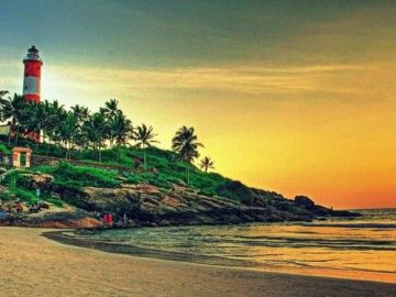 Kerala Beach and Wildlife Tour