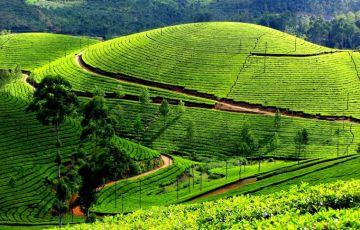 Kerala Glances Tour