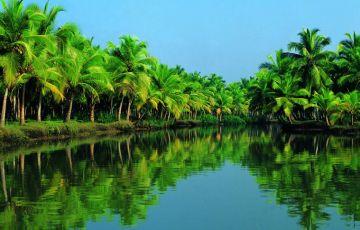 Malabar Specials. Kerala