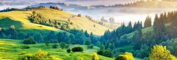 WONDERFUL BANGALORE MYSORE COORG PACKAGE 4 NIGHTS AND 5 DAYS