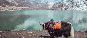 ALLURING BEAUTY OF THE NORTH EAST INDIA 5 NIGHTS AND 6 DAYS