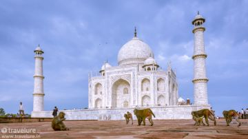 MOST AMAZING JAIPUR AGRA TOUR PACKAGE 4 NIGHTS AND 5 DAYS