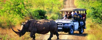 AMAZING WILDLIFE TOUR WITH KAZIRANGA NATIONAL PARK 4 NIGHTS