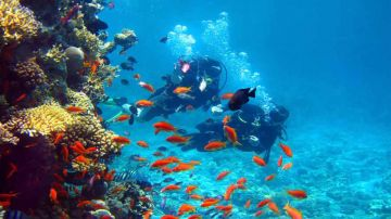 Alluring Andamans 09 Days Deluxe Package