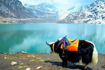PLACE TO SEE GANGTOK AND DARJEELING
