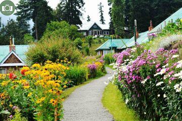 Best of Jammu & Kashmir Tour Package