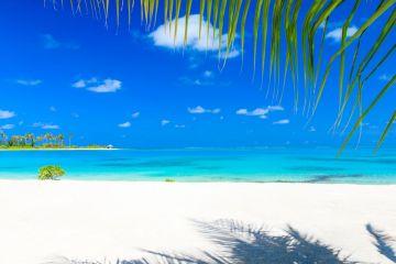 Divine Islands