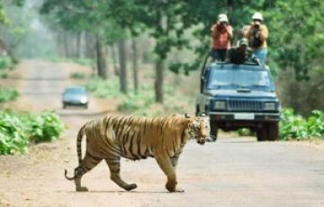 EXOTIC FLORA AND FAUNA SPECIES TOUR PACKAGE 3 NIGHTS AND 4 D