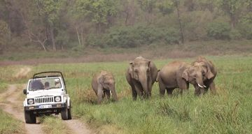 DELHI TO CORBETT NATIONAL PARK WEEKEND TOUR PACKAGE 2 NIGHTS