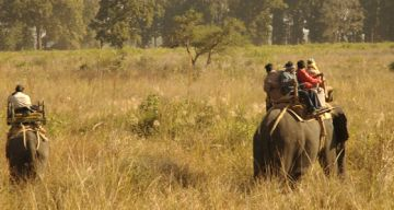 KANHA TOUR FROM NAGPUR 2 NIGHTS AND 3 DAYS