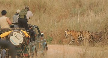 NAGPUR TO PENCH NATION AL PARK WEEKEND TOUR PACKAGE 2 NIGHTS