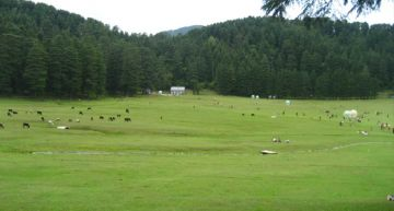 CHANDIGARH DALHOUSIE WEEKEND TOUR PACKAGE 2 NIGHTS AND 3 DAY