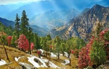 BEST OF ALMORA HILLS TOUR PACKAGE 3 NIGHTS AND 4 DAYS