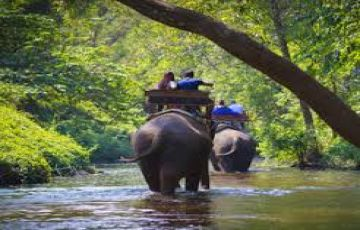 Tantalizing Thekkady Tour With Houseboat Sta