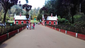 2 Nights/3 Days Ooty BlueMountain Package