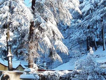 ENJOY MANALI  TOUR PACKAGE 2 NIGHTS AND 3 DAYS