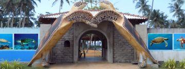 STUNNING JOURNEY IN SRILANKA