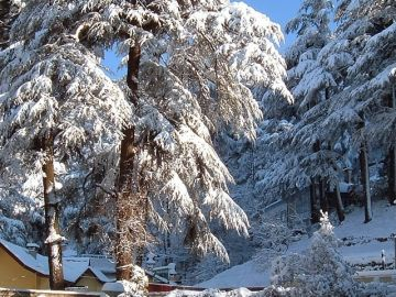 SPECIAL SHIMLA AND MANALI WINTER PACKAGE 3 NIGHTS AND 4 DAYS