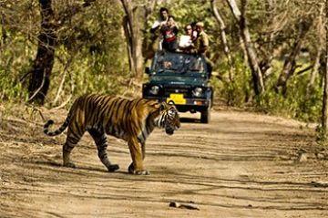 Heritage With Wildlife
