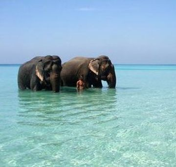 ANDAMAN AND NICOBAR BEACH TOUR PACKAGE 2 NIGHTS AND 3 DAYS