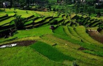 TOP TOURIST ATTRACTIONS IN KAUSANI