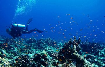 BEST PLACES TO VISIT IN ANDAMAN NICOBAR