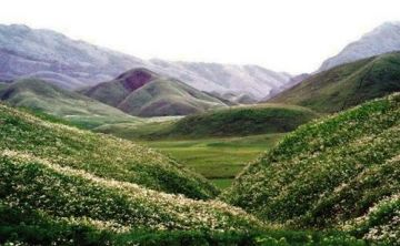 MUST VISIT PLACES IN INDIA BEFORE YOU DIE DZUKOU VALLEY KOHI