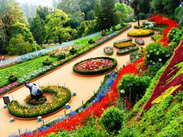 VISIT THE BOTANICAL GARDENS IN OOTY