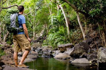 BEST BEAUTIFUL TOURIST PLACES IN COORG