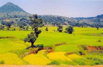 BEST BEAUTIFUL TOURIST PLACES IN ARAKU VALLEY