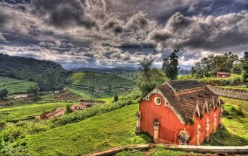 OOTY NATURE IS THE BEST HOST TO START A NEW LIFE